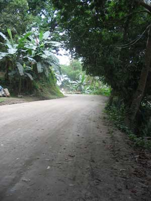 ../../pic/Philippinen/Motorradtour_Tammaraw/big/road_puerto_1.jpg